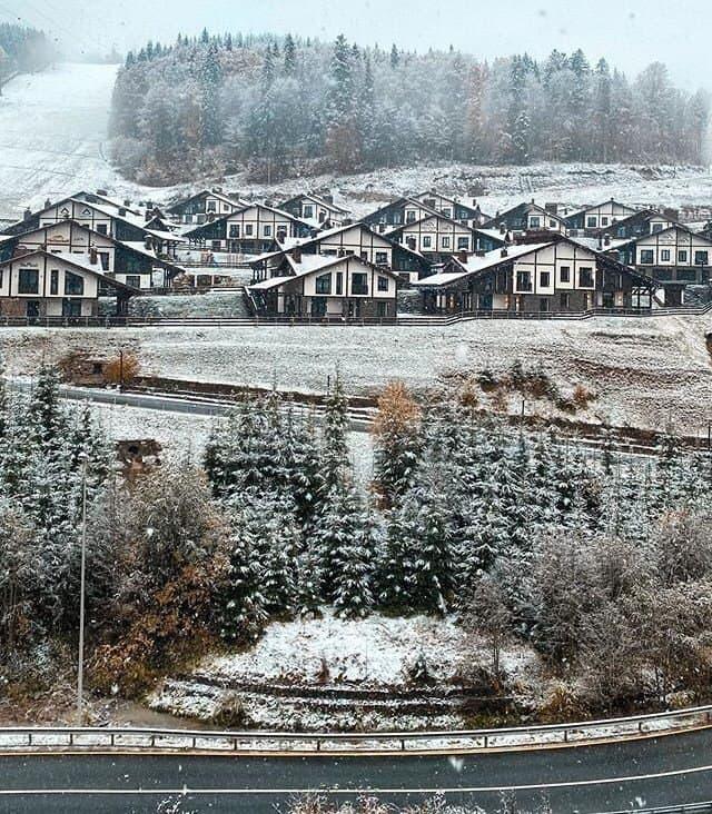 В трех областях Украины выпал снег. Фото