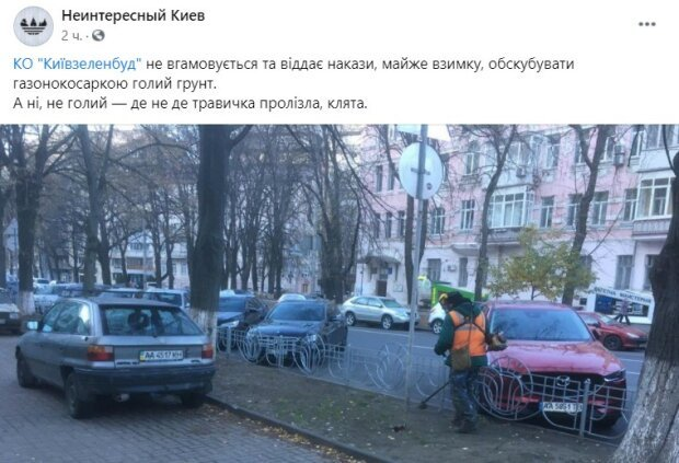 В Киеве заметили коммунальщика, который косил несуществующую траву. ФОТО