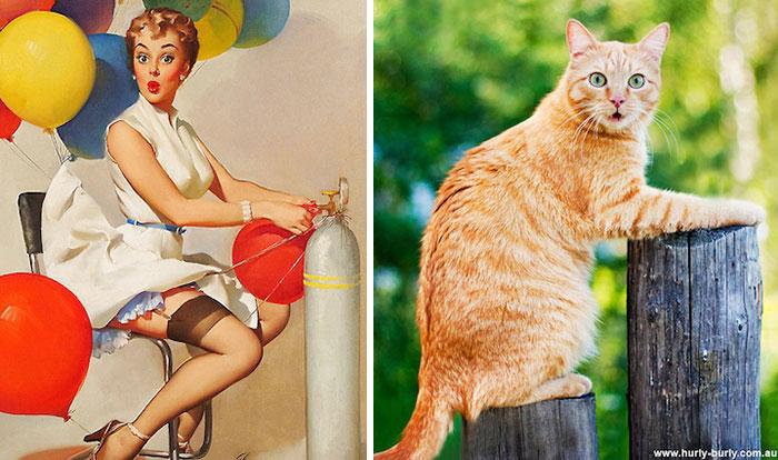 Кошки, позирующие лучше девушек! ФОТО
