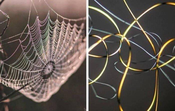 Удивительные снимки некоторых вещей под микроскопом