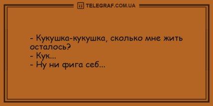Самые смешные анекдоты на день (ФОТО)